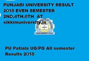 Punjabi University Result April/May 2019 Part I, II, III Year - PU