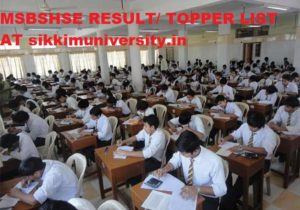 Maharashtra SSC Results 2020 - MSBSHSE 10/SSC March Exam Result 2020 1