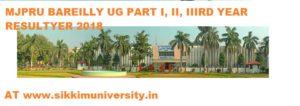MJPRU Bareilly Ist, 2nd, 3rd Year Result 2020 BCOM, BA, BSC, MCOM, MSC, MA Exam 1