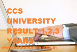 CCSU Ist, 2nd, 3rd year result 2020 BA BSC BCOM Exam , CCS University  Part I, II, III Year UG Result 2020 1