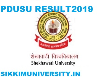 PDUSU BA IInd year Result 2020 Shekhawati University  BA I, II, III  name Wise Result  Regular & Private 1