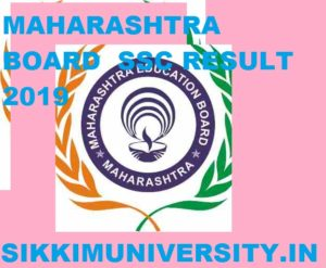 Maharashtra Board Results 2020 Roll Number Wise/Name Wise at Mahresults.nic.in 2