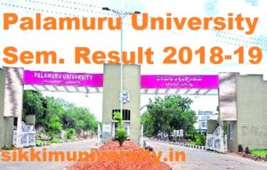 Palamuru University CBCS UG 3rd & 5th Sem  Result 2018-2019 BA BCOM