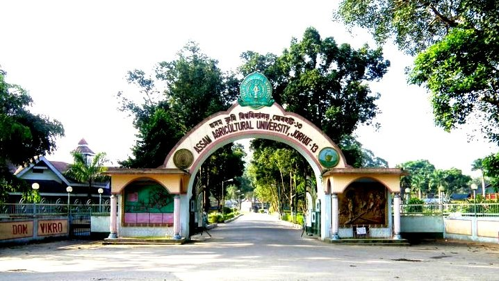 Assam Agriculture University Hall Ticket 2019 MSC BSC (Agri.) Admit Card 1