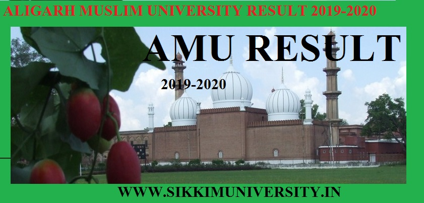 AMU 2nd 4th 6th Sem. Results 2019-20 B.Ed BSC BA BCom Results Dates 1