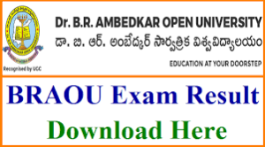 BRAOU UG/PG BA/BSc/B.Com Degree Results 2019 Name Wise Dr. Ambedkar University www.braou.ac.in