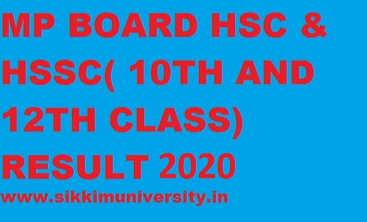 MP Board HSSC & HSC Results 2020 Check Here Madhya Pradesh 10th & 12th Result 1