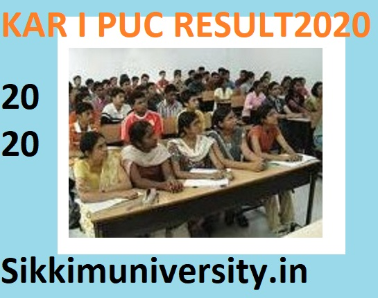 Karnataka I PUC Result 2020 (New Result Date) - KSEEB First year PUC Result 2020 1