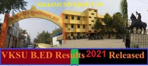 VKSU B.ED Results 2021 ( Released) of All Semesters - VKSU B.Ed I, II Year Result 2021 Available Here 1